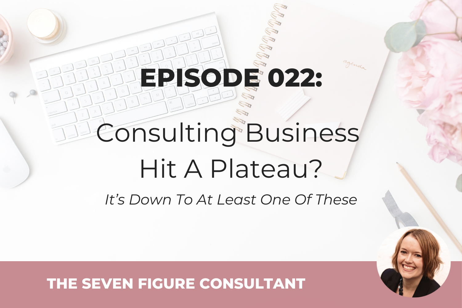 You are currently viewing Episode 022: Consulting Business Hit A Plateau? It's Down To At Least One Of These